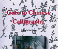 Gate to Chinese Calligraphy