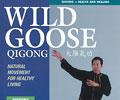 Wild Goose Qigong