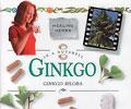 In a Nutshell: Ginkgo