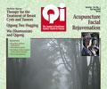 Vol. 15, No. 1: Spring 2005 Qi Journal (online Digital edition)
