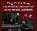 Xing Yi Nei Gong