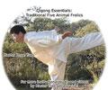 Qigong Essentials: 5 Animal Frolics