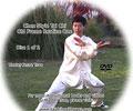 Traditional Chen Style Tai Chi Laojia Yilu