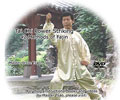 Tai Chi Power Striking 42 Methods of Fajin