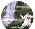 Tai Chi Silk Reeling (Chan Si Gong)