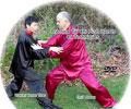 Practical Tai Chi Push Hands 41 Techniques