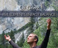 Qi Gong Five Elements Energy Balance with Lee Holden
