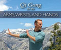 Qi Gong for Arms, Wrists, Hands with Lee Holden