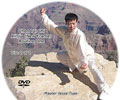 Chen Style Tai Chi Xinjia Yilu (New Frame Routine One) [disc 2]