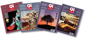 2020 Qi Journal bundle