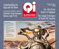 Vol. 30, No. 2: Summer 2020 Qi Journal (online Digital edition)