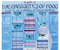 Guide to the Energetics of Food