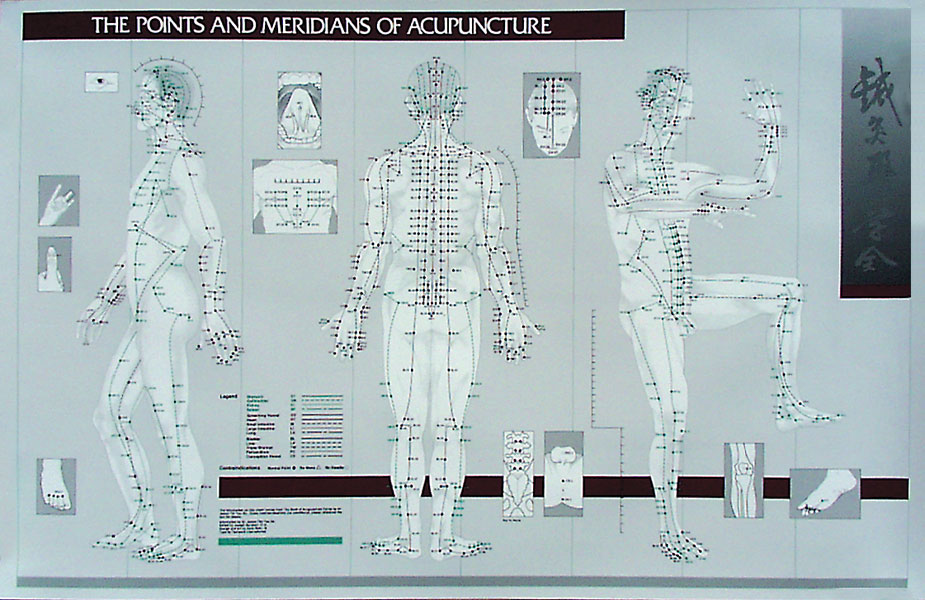 Points and Meridians of Acupuncture Chart