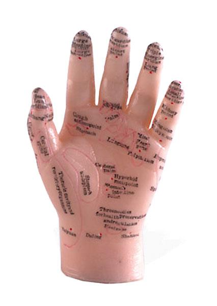 Reflexology Hand Model