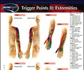 Trigger Points 2