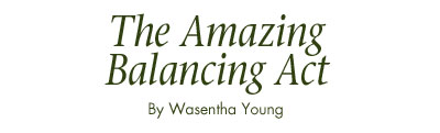 The Amazing Balancing Act by Wasentha Young