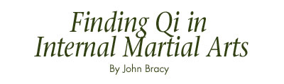 Finding Qi in Internal Martial Arts