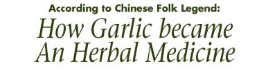 How Garlic became an Herbal Medicine