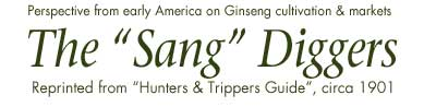 Ginseng: The Sang Diggers from 1901