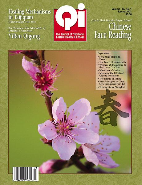 Vol. 17, No. 1:  Spring 2007